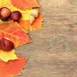 Autumnal leaves and chestnuts on an old wooden texture — Stock Photo #34197449