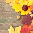 Autumnal leaves and chestnuts on a wooden texture — Stock Photo #34197489