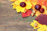 Colorful autumnal leaves and chestnuts on a wooden background — Stock Photo