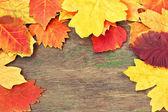 秋天的叶子上一个木质的纹理 — 图库照片