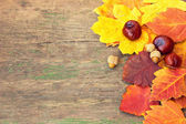 Autumnal colorful leaves and chestnuts on a wooden texture — Stock Photo