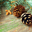 Pine cones on a wooden background — ストック写真