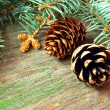 Pine cones on a wooden background — Foto de Stock