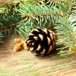 Pine cone on a wooden background close up — Stock Photo