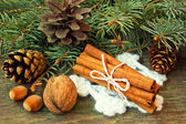 Cinnamon sticks and nuts on a wooden background — Stock Photo
