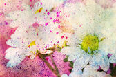 Grunge artwork with chamomiles and colorful watercolor — Foto Stock