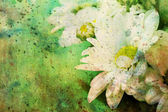 Grunge artwork with chamomiles and watercolor smudges — Stock Photo