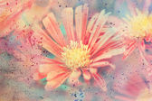 Artwork with cute red aster flower and watercolor splatter — Stock Photo