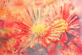 Cute artwork with red aster flowers — Стоковое фото