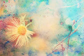Scenic artwork with beautiful small chamomile and watercolor smudges — 图库照片
