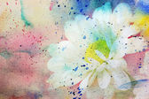 Adorable chamomile and watercolor splatter — Stock Photo