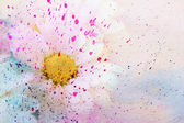 Cute chamomile and watercolor — Stock Photo
