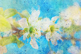 Spring twig with flowers and messy watercolor splatter — Stock Photo