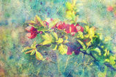 Grunge messy watercolor splashes and branch with red flowers — Stock Photo
