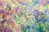 Grunge colorful watercolor splatter and small blooming flowers — Stock Photo