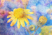 Messy colorful watercolor splatter and yellow flower — Stock Photo