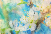 Messy watercolor splashes and blooming spring twig — ストック写真