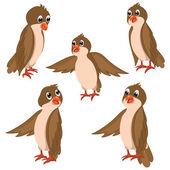 Brown Birds Vector Illustrations Set — Stock Vector