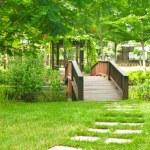 Yaz aylarında Park güzel eski ahşap köprü — Stok fotoğraf