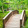 Nice old wooden bridge in park at summertime. — Photo