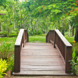 Nice old wooden bridge in park at summertime. — Foto Stock