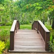 Nice old wooden bridge in park at summertime. — Stock Photo #12193460