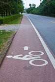 Bicycle Road Marking — Stock Photo