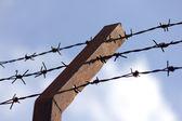 Dikenli tel çit duvar — Stok fotoğraf
