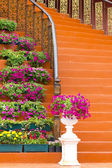 Marble stairs with wooden railing and flowers — Stock Photo