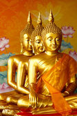 Row of sitting golden Buddha statute — Stock Photo