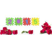 Celebrating the New Year 2015 — Stock Photo