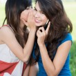 Summer gossip - Stock Photo