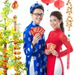 Vietnamese New Year — Stock Photo