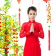 Vietnamese traditions — Stock Photo #18786917