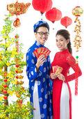 Vietnamese New Year — Stock Photo