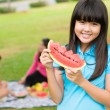 On a picnic — Stockfoto #21565669
