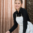 Foto Stock: Chamber maid at work