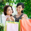 Shopping friends — Stock Photo #25564609