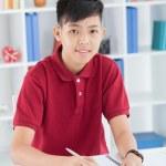 Diligent schoolboy — Stock Photo #27651199