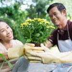 Cheerful gardening — Stock Photo #29929175