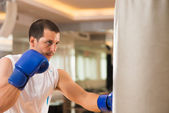 Training boxer — Foto de Stock