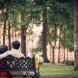 Senior couple in the park — Stock Photo #39887127