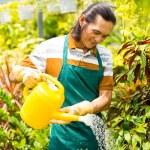 Watering plants — Stock Photo #46249471