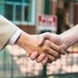 Shaking hands — Stock Photo #46251889