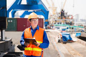 Port superintendent — Stock Photo