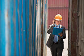 Busy port inspector  — Stock Photo
