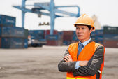 Seaport control — Stock Photo