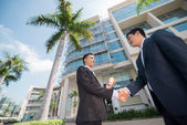 Business partners shaking their hands — Stock Photo