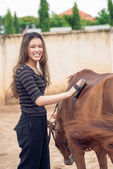 Girl grooming pony — Stockfoto