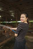 Girl rinsing horse in stubble — Stock Photo